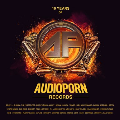 10 Years of Audioporn LP artwork