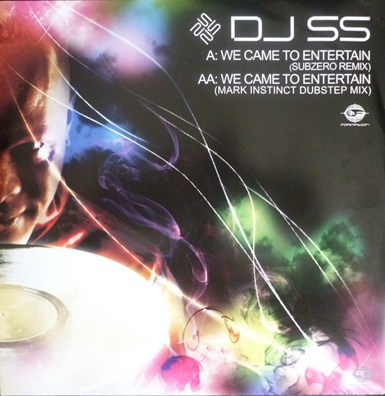 We Came To Entertain (Subzero Remix / Mark Instinct Dubstep Mix) artwork