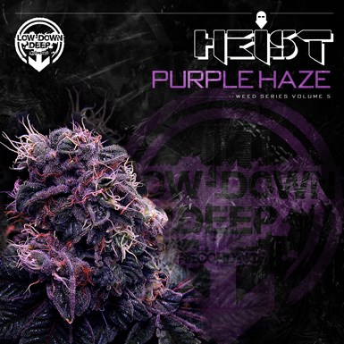Purple Haze artwork