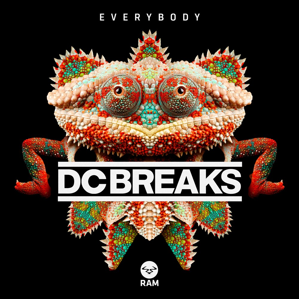 Everybody artwork
