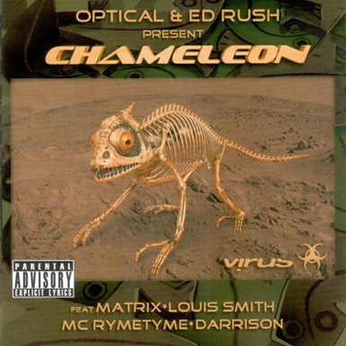 Chameleon artwork